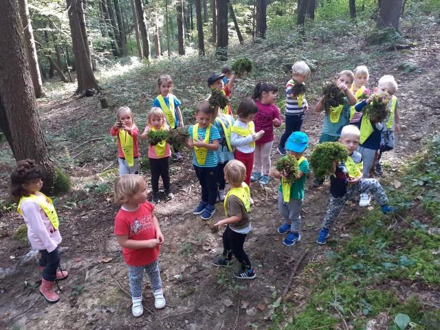 Teden gibanja-Kdo gre z nami v gozdiček